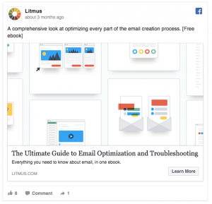 Litmus Facebook Ad Example
